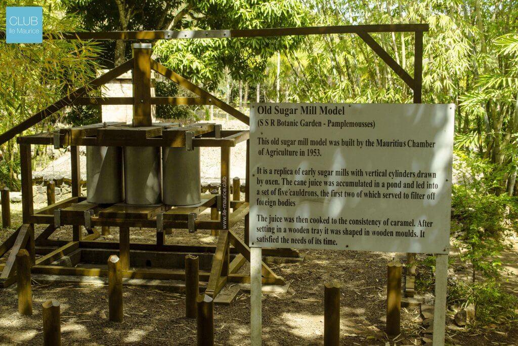 jardin de pamplemousses - fabrication de sucre